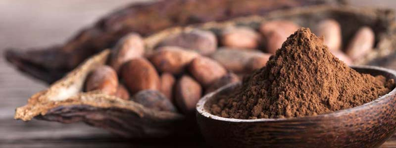 Kakao Kardia