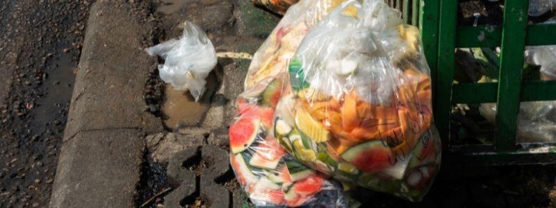 Food Waste Importance